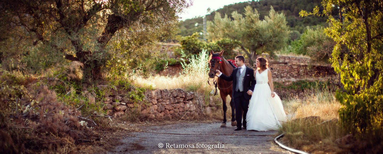 Mascotas boda Valencia